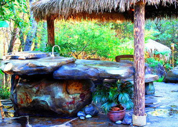Tropical Backyard Landscaping Ideas - My Interior Life