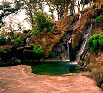 Natural design for Pool design hillside