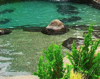 Natural Design swimming pool and landscape design photos and