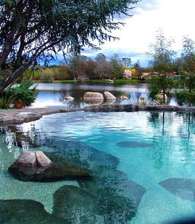 Pool designers near me private backyard pool rio rio de for Pool design near me