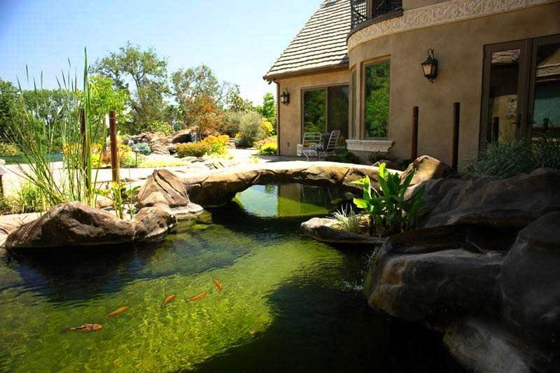 Natural design for Koi pond swimming pool