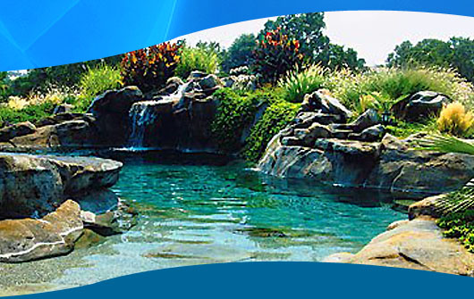 Image gallery natural swimming holes Natural swimming pool builders