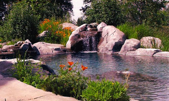The Swimming Hole And Waterfall Are The Centerpiece Of This Natural  Landscape Design, Featuring California Poppies