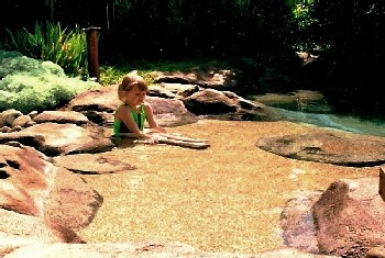 Small Natural Pool Designs unique swimming pool designs swimming pool designs with natural Small Natural Pool Designs Natural Pool Natural Design Swimming Pool And Landscape Design Photos And Information